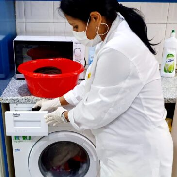 Coronavirus: la responsabilidad 'en soledad' de las pequeñas residencias